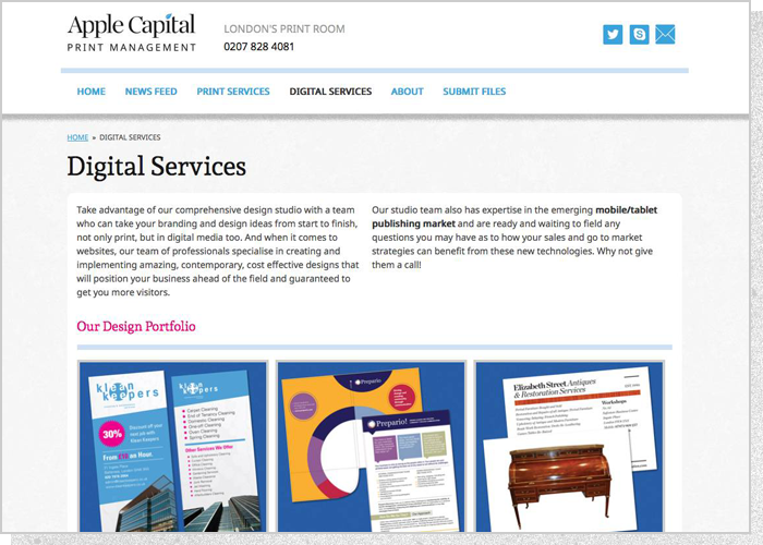 Apple Capital PM Website - Screen 2