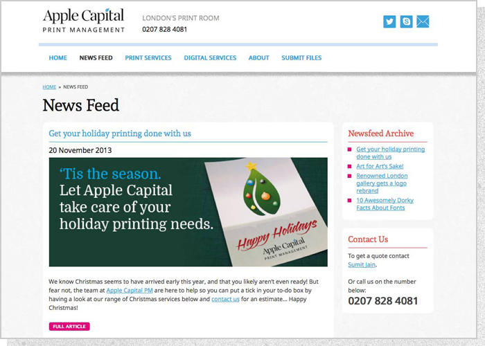 Apple Capital PM Website - Screen 3